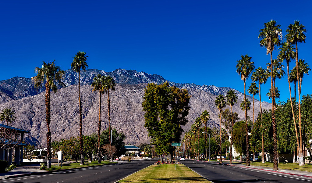 Ascendant Holidays Top 7 Spring Break Destinations Palm Springs